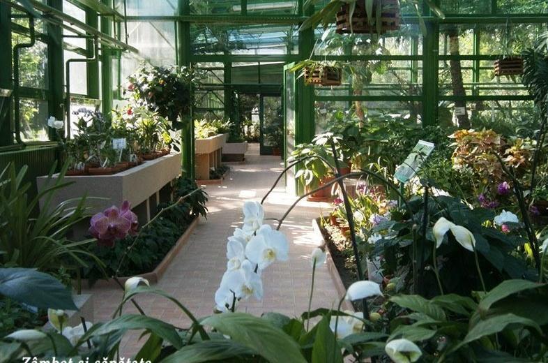Gradina Botanica din Bucuresti