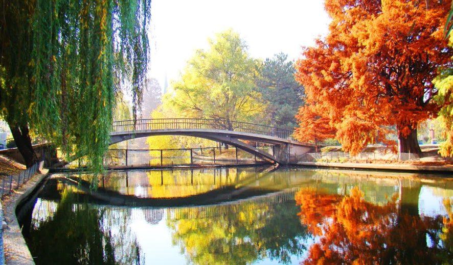 Parcul Regele Mihai I al Romaniei