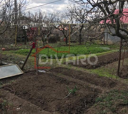 Vanzare casa teren 1000mp livada generoasa Buftea Gara