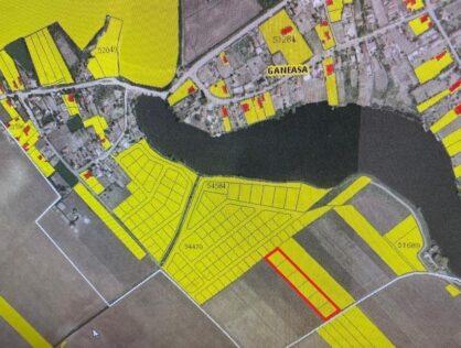 Vanzare teren intravilan 6913mp sase parcele comuna Ganeasa